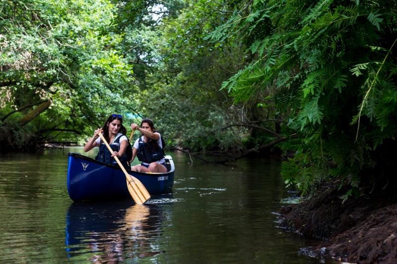 Balade en canoë traditionnel : escapade cistude